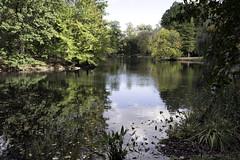 The Pool IV (Joe Josephs: 2,861,655 views - thank you) Tags: centralpark joejosephs nyc newyorkcity copyrightjoejosephs landscapephotography outdoorphotography ny usa manhattan centralparknewyork travelphotography travel