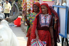 Be careful (Rahul Gaywala) Tags: kutch kutchh vibrant gujarat lrk grk white desert handicraft art india village rural boy girl woman women life colorful vivid tribal colorsofindia greatrunnofkutch eyes expression culture portrait ethnic face travel people