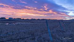 IMG_3317 (Scott Martin Calgary) Tags: dewinton alberta canada ca sunrise sprucemeadows clouds pink pinkclouds fence