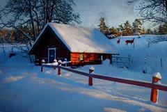 Winter scene FF (BirgittaSjostedt) Tags: winter house red cottage fence shadow sun covered sport outdoor scene sweden texture paint unique art fencefriday magicunicornverybest ie birgittasjostedt
