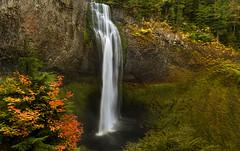 Salt Creek Falls, OR (Sveta Imnadze) Tags: nature landscape waterfalls oregon pacificnorthwestoutdoors hiking saltcreekfalls