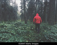 Photo accepted by Stockimo (vanya.bovajo) Tags: stockimo iphonegraphy iphone man hiking walking forest exploring male teenager alone nobody men adult adults scary scared lost tale dark darkness mist outside outdoors mountains wood woods