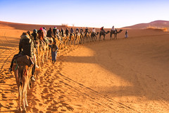 IMG_6175 (Israel Filipe) Tags: marrocos