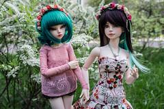 Girlish talk (- ) Tags: bjd msd iplehouse tania alicecatwell fairyland rheia minifee