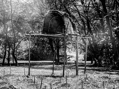 St. Mary's City Indian Village, 1634 (-gregg-) Tags: st marys city maryland historic trees grass indian village smoke hut bw