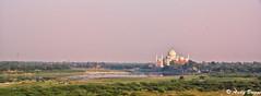 Taj Mahal from the Red Fort (Pandster1981) Tags: a77 agra honeymoon india redfort sony1650f28 sonya77 tajmahal