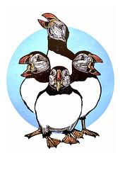 Four Calling Birds (ieuan_edwards) Tags: linocut puffin christmas xmas linogravure twelve days four calling birds