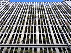 Sustentable | Sustainable | Sostenibile (Raul Jaso) Tags: building facade buildings mexico edificios mexicocity df facades fachada ciudaddemexico mexicodf fachadas fz150 panasonicfzseries panasonicfz150 rauljaso rauljasofotografia rauljasophotography