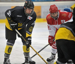 EC Bad Tölz vs. Junghaie, 1:7, 20.09.2015
