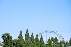 DSCF7333 (keita matsubara) Tags: park japan zoo amusement  saitama  tobu  kasukabe    tobuzoo