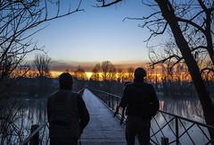 L'attesa (emanuel.foglia) Tags: nikon alba fiume ponte acqua inverno atmosfera luce paesaggio adda fotografi attesa attimo d3200 farageradadda nikkor18105