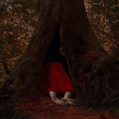 When Dreams Die (vincentminor) Tags: tree fairytale forest dark dead death dreams cape delusions fantasies