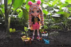 Ensinamentos a Dolly/ :: Dolly - Blythe Ice Rune (Custom Simone Albergaria)