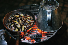 roasting chestnuts at 'magusto' in Porto (Gail at Large + Image Legacy) Tags: autumn portugal porto chestnuts outono magusto 2015 castanhas gailatlargecom