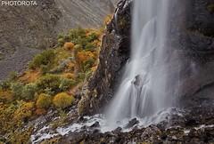 FALL IN AUTUMN (PHOTOROTA) Tags: autumn pakistan canon flickr abid photorota
