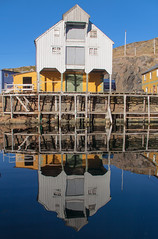 In the mirror (harald.bohn) Tags: sea reflection fjord sj speiling sjhus