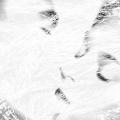 344. a shape of passion (joe.laut) Tags: bw square blackwhite kiss couple minimal sw dezember schwarzweiss hikey 2015 incoloro joelaut 3652015