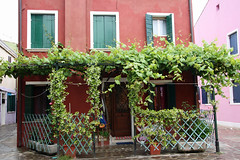 2013.05.25.086 BURANO (alainmichot93 (Bonjour  tous)) Tags: rose pluie vert porte ruelle venise fentre couleur italie faade venezzia 2013 vntie isoladeburano