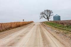 Rural (mjlmadison) Tags: tree quiet iowa gravel grainbin prairiecity nealsmithwildliferefuge