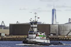 r_151123308_skelsisl_a (Mitch Waxman) Tags: newyorkcity newyork tugboat statenisland vane redhook newyorkharbor killvankull johnskelson