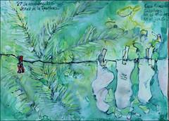 Jerez de la Frontera. Casa Rosaleda. 27 de noviembre, 2015. (Sharon Frost) Tags: travel socks gardens paintings drawings canson clotheslines sketchbooks journals jerezdelafrontera sharonfrost daybooks casarosaleda