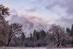 Yosemite 279 (Images by John 'K') Tags: winter snow nikon yosemite yosemitenationalpark yosemitevalley johnk d610 yosemitepark johnkrzesinski randomok nikond610