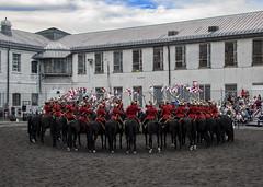 fifty (kallo39) Tags: royalcanadianmountedpolice mounties lance horses kingstonpenkingston ontario canada behindthewalls