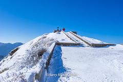 Harry_30969,,,,,,,,,,,,,,,,,Winter,Snow,Hehuan Mountain,Taroko National Park,National Park (HarryTaiwan) Tags:                 winter snow hehuanmountain tarokonationalpark nationalpark     harryhuang   taiwan nikon d800 hgf78354ms35hinetnet adobergb  nantou mountain