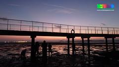 Sunrise at Chek Jawa boardwalk (wildsingapore) Tags: chek jawa pulau ubin shore singapore marine coastal intertidal seashore marinelife nature wildlife underwater wildsingapore landscape