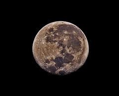 Waning Gibbous Moon (Rajneesh Parashar) Tags: moon gibbousmoon astronomy india hyderabad asia waningmoon lunar