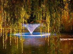 Autumn series (Nick Kenrick.) Tags: willow fountain magicunicornverybest