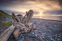 Cape Breton, Nova Scotia. (pjr100) Tags: beach sunset driftwood atlantic cape breton nova scotia landscape