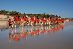 Cable beach 6 (DSC_0697 y) (Tartarin2009) Tags: tartarin2009 cablebeach boome australia nikon d80 travel people camel beach sand reflection