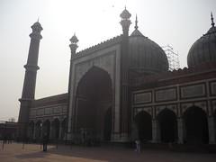 India Delhi Feb 2011 (nicholaallan24) Tags: india delhi feb february 2011 fiona chris