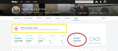 15 MILLION VISITORS (SAUD AL - OLAYAN) Tags: 15 million visitors