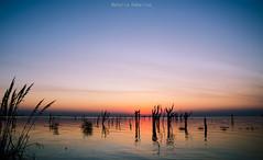 Atardecer en Miramar (NatyCeballos) Tags: miramar nikond7000 nikon atardecer sunset laguna marchita airelibre naturaleza nature reflejo reflection agua arbol