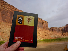 World Weary Travel Book (ex_magician) Tags: labyrinthcanyon adriftadventures utah moab september 2016 roadtrip kayaking desert greenriver moik photo photos picture pictures image lightroom adobe adobelightroom interesting vacation book nirvana inutero