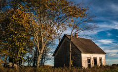 The Brimley House (Fall) (BryanNewland) Tags: brimley michigan house farmhouse abandoned old architecture trees sky clouds autumn fall colortour upperpeninsula baymillsindiancommunity yooper sunshine goldenhour