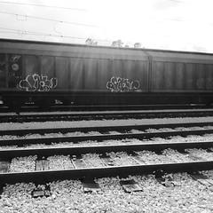 Backlight  ☀ 🚊 #stolenstuff #graffitiblog #check4stolen #flickr4stolen #freight #bombing #fr8 #blackandwhite #graffiti #graffititrain (stolenstuff) Tags: instagram stolenstuff graffiti graffititrain benching