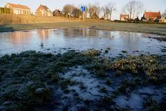 bevroren waterplassen (Omroep Zeeland) Tags: bevroren waterplas