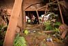 IMG_8311 (caastro) Tags: mariana minasgerais desastre barragemdofundão bentorodrigues paracatu gesteira samarco barralonga