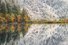 Mirror Lake in autumn. (baddoguy) Tags: autumn awe background beautiful beauty change china chinese contrast destination fall foliage forest heritage jiuzhaigou lake mirror mixed national nature park reflection scene scenery season sichuan snow stunning tourism transform travel tree unesco valley variety various vertical view weather winter world
