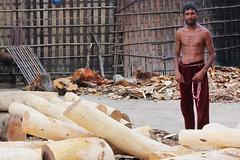 Wood worker (I.M.W.) Tags: bangladesh srimangal wood jackfruit labour labor saw