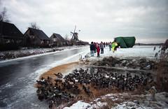 img001 (Wytse Kloosterman) Tags: 11steden 1997 elfstedentocht friesland schaatsen