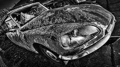 1974 Citron DS 20 (Pieter de Knijff) Tags: 1974 citron ds 20 classic car oldtimer bw blackandwhite monochrome vehicle holland netherlands dutch rust abandoned rusty corrosion oxidation