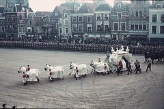 #Burial of Queen Wilhelmina of the Netherlands, December 8th, 1962. [3338x2207] #history #retro #vintage #dh #HistoryPorn http://ift.tt/2gTVCAF (Histolines) Tags: histolines history timeline retro vinatage burial queen wilhelmina netherlands december 8th 1962 3338x2207 vintage dh historyporn httpifttt2gtvcaf
