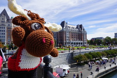 DSC00470 (The Crochet Crowd) Tags: crochetmoose amigurumi moose crochet doll alaska britishcolumbia thecrochetcrowd michaelsellick jeannesteinhilber danielzondervan crochetcruise mooseontheloose