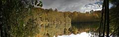 """L'envers du décor  . . .   45/52 - thème """" UPSIDE DOWN """". (Daniel.35690) Tags: upsidedown àlenvers 52weeksthe2016edition week452016 52weeks 4552 2016 rennes forêtderennes lenversdudécor"""