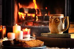 Old Friends (miss.interpretations) Tags: fireplace fire firewood candle books mystery sherlockholmes coffee owl mug cocoa cups tea cuppa bread dessert bakedgoods mood happy winter coldnights 2016 warmth cozy paper plate colorado missinterpretations