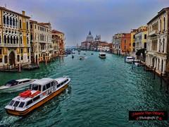 Highlights Venice, Italy November 2016 (DarknightJo_Photography) Tags: venice venezia italy cityscape venetie canalgrande gondola gondels sanmarcoplein sanmarcobasiliek rialtobrug carnaval carnevaledivenetia maskers italie water boten bruggen